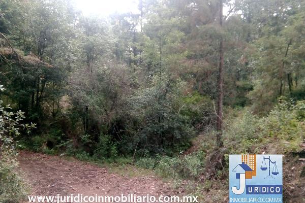 Foto de terreno habitacional en venta en  , san juan tehuixtitlán centro, atlautla, méxico, 5371448 No. 15