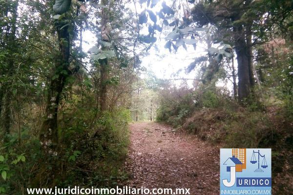 Foto de terreno habitacional en venta en  , san juan tehuixtitlán centro, atlautla, méxico, 5371448 No. 17