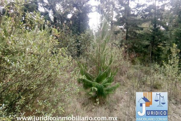 Foto de terreno habitacional en venta en  , san juan tehuixtitlán centro, atlautla, méxico, 5371448 No. 18