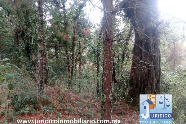Foto de terreno habitacional en venta en  , san juan tehuixtitlán centro, atlautla, méxico, 5371448 No. 20