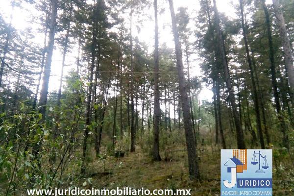 Foto de terreno habitacional en venta en  , san juan tehuixtitlán centro, atlautla, méxico, 5371448 No. 21