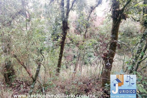 Foto de terreno habitacional en venta en  , san juan tehuixtitlán centro, atlautla, méxico, 5371448 No. 22