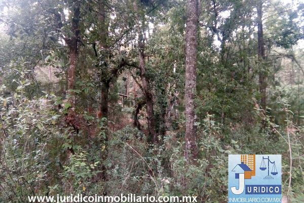 Foto de terreno habitacional en venta en  , san juan tehuixtitlán centro, atlautla, méxico, 5371448 No. 23