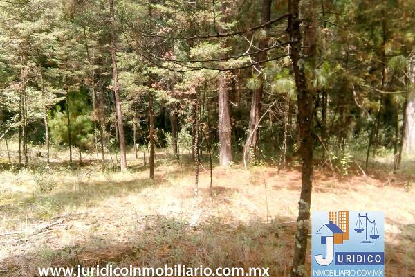 Foto de terreno habitacional en venta en  , san juan tehuixtitlán centro, atlautla, méxico, 5371448 No. 26