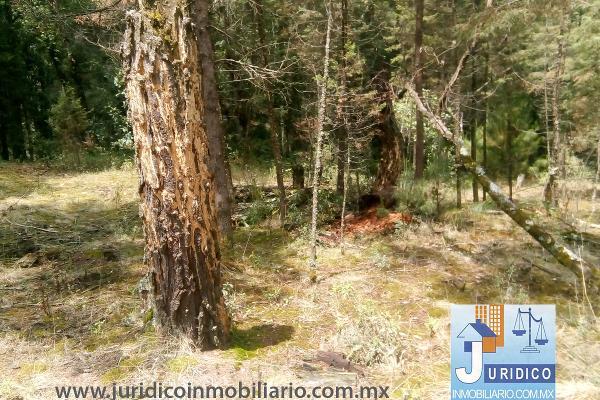Foto de terreno habitacional en venta en  , san juan tehuixtitlán centro, atlautla, méxico, 5371448 No. 27