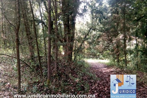 Foto de terreno habitacional en venta en  , san juan tehuixtitlán centro, atlautla, méxico, 5371448 No. 28