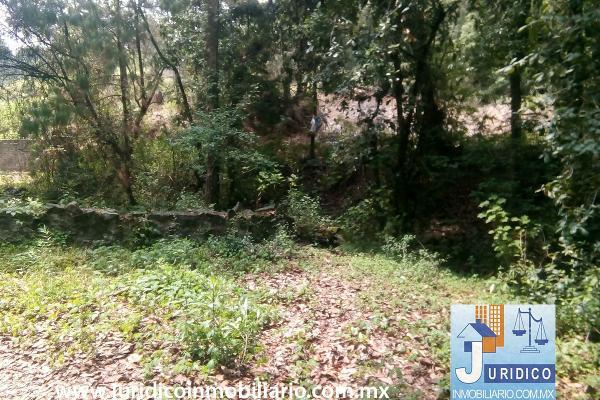 Foto de terreno habitacional en venta en  , san juan tehuixtitlán centro, atlautla, méxico, 5371448 No. 29