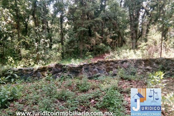 Foto de terreno habitacional en venta en  , san juan tehuixtitlán centro, atlautla, méxico, 5371448 No. 31
