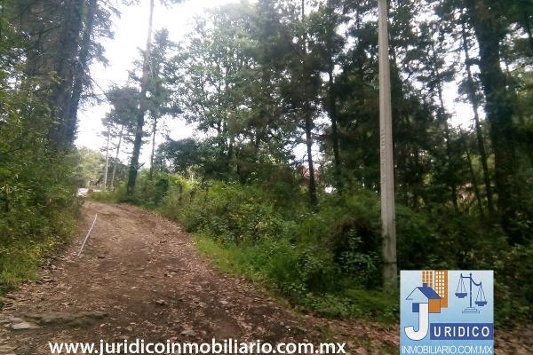 Foto de terreno habitacional en venta en  , san juan tehuixtitlán centro, atlautla, méxico, 5371448 No. 32