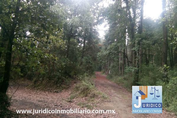 Foto de terreno habitacional en venta en  , san juan tehuixtitlán centro, atlautla, méxico, 5371448 No. 35