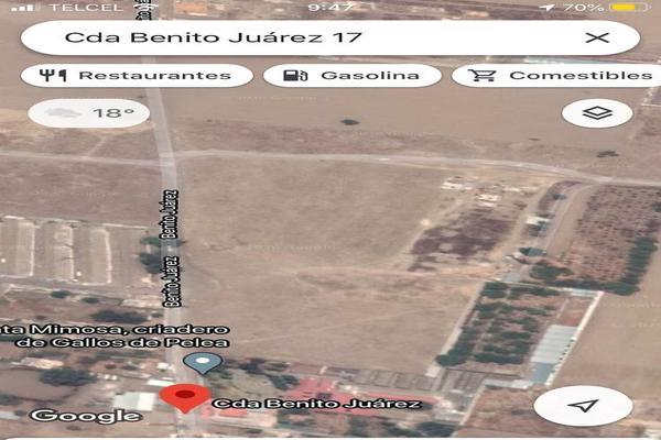 Foto de terreno habitacional en venta en  , san juan temamatla, temamatla, méxico, 20106382 No. 12