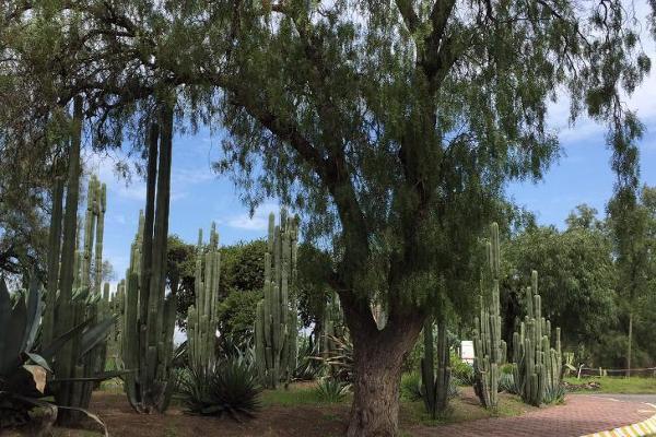 Foto de rancho en venta en  , san juan teotihuacan de arista, teotihuacán, méxico, 3063595 No. 03