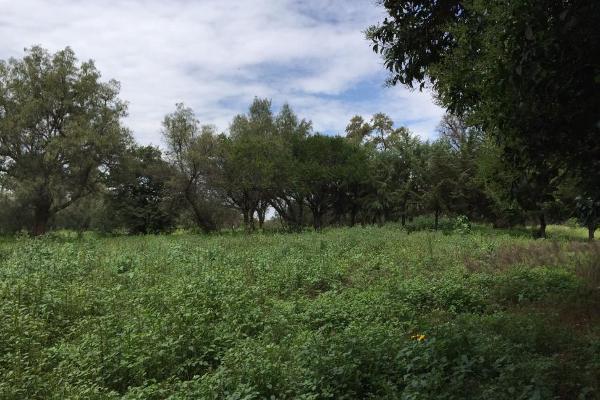 Foto de rancho en venta en  , san juan teotihuacan de arista, teotihuacán, méxico, 3063595 No. 06