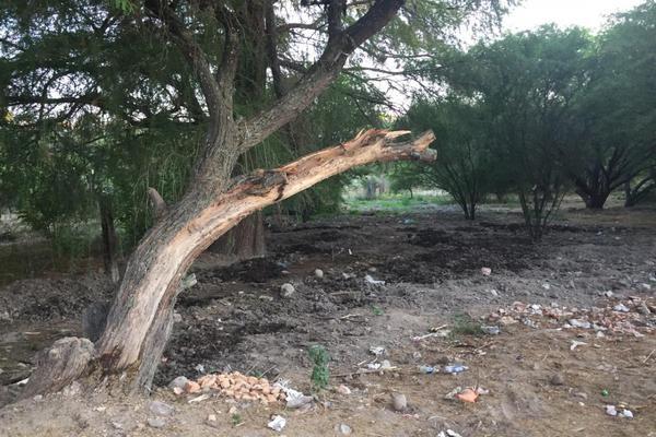 Foto de terreno habitacional en venta en  , san juan, tequisquiapan, querétaro, 10014426 No. 07