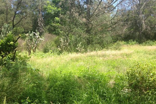 Foto de terreno habitacional en venta en  , san juan, tequisquiapan, querétaro, 2721798 No. 02