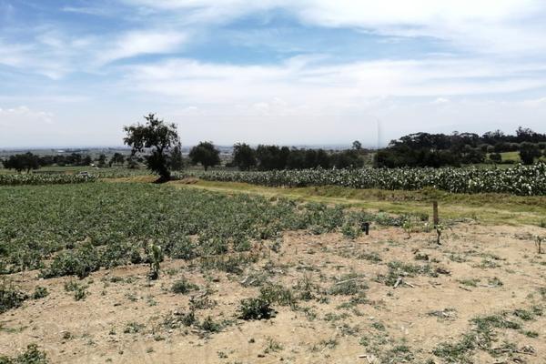 Foto de terreno habitacional en venta en  , san juan tilapa centro, toluca, méxico, 15235433 No. 01