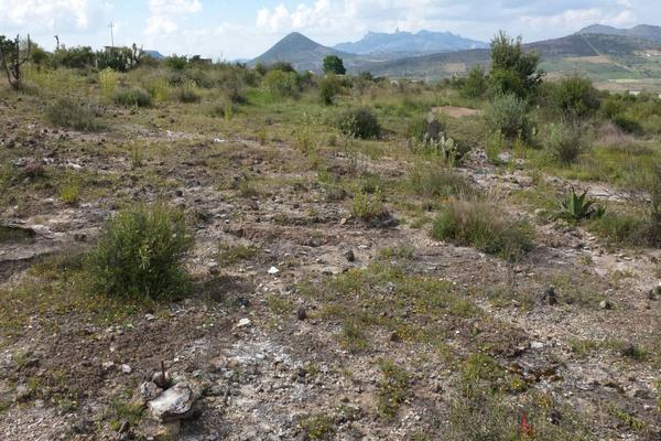 Foto de terreno habitacional en venta en  , san juan tilcuautla, san agustín tlaxiaca, hidalgo, 7304437 No. 01