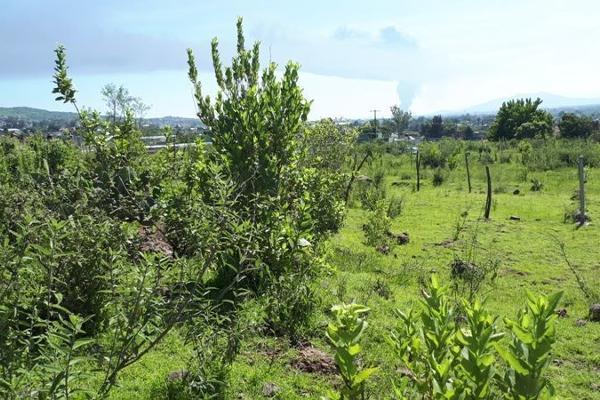 Foto de terreno habitacional en venta en  , san juanito itzicuaro, morelia, michoacán de ocampo, 8896525 No. 03