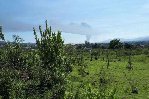 Foto de terreno habitacional en venta en  , san juanito itzicuaro, morelia, michoacán de ocampo, 8896525 No. 06