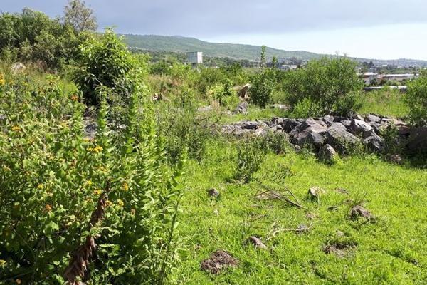 Foto de terreno habitacional en venta en  , san juanito itzicuaro, morelia, michoacán de ocampo, 8896525 No. 08