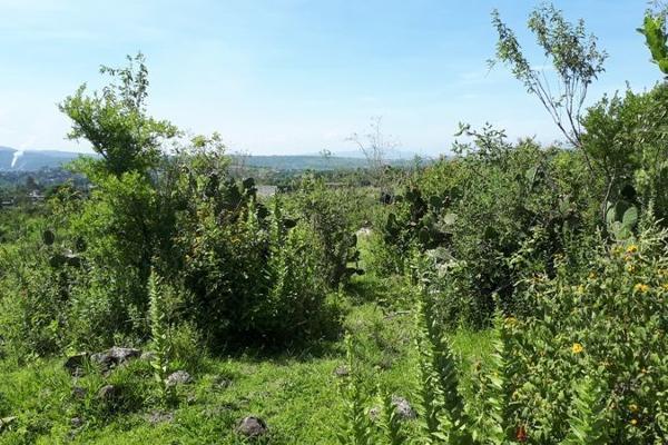 Foto de terreno habitacional en venta en  , san juanito itzicuaro, morelia, michoacán de ocampo, 8896525 No. 09
