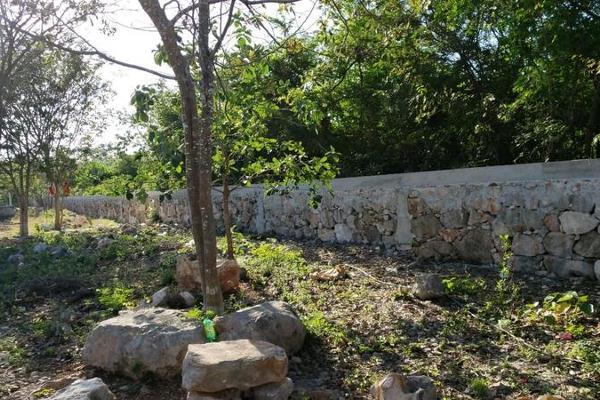 Foto de terreno habitacional en venta en  , san lázaro, umán, yucatán, 8101556 No. 08