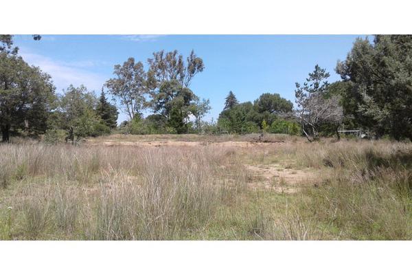 Foto de terreno habitacional en venta en  , san lucas cuauhtelulpan, tlaxcala, tlaxcala, 5799716 No. 01