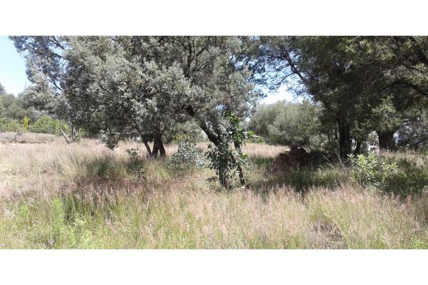 Foto de terreno habitacional en venta en  , san lucas cuauhtelulpan, tlaxcala, tlaxcala, 5799716 No. 04