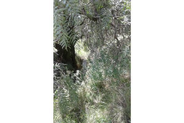 Foto de terreno habitacional en venta en  , san lucas cuauhtelulpan, tlaxcala, tlaxcala, 5799716 No. 07