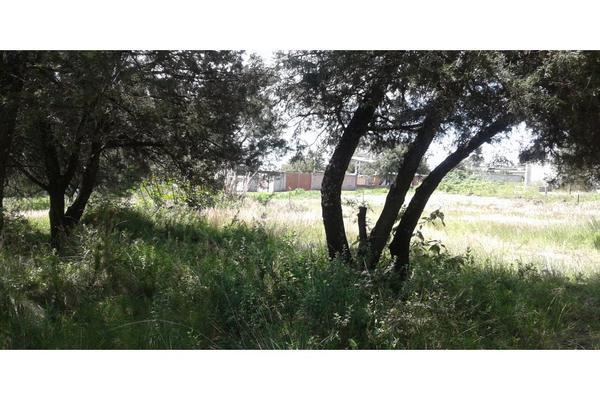 Foto de terreno habitacional en venta en  , san lucas cuauhtelulpan, tlaxcala, tlaxcala, 5799716 No. 08