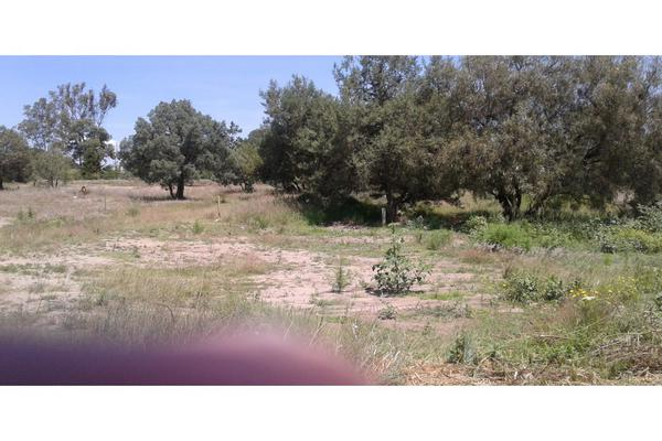 Foto de terreno habitacional en venta en  , san lucas cuauhtelulpan, tlaxcala, tlaxcala, 5799716 No. 09