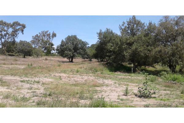 Foto de terreno habitacional en venta en  , san lucas cuauhtelulpan, tlaxcala, tlaxcala, 5799716 No. 11