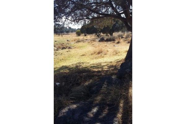 Foto de terreno habitacional en venta en  , san luis apizaquito, apizaco, tlaxcala, 5834984 No. 03