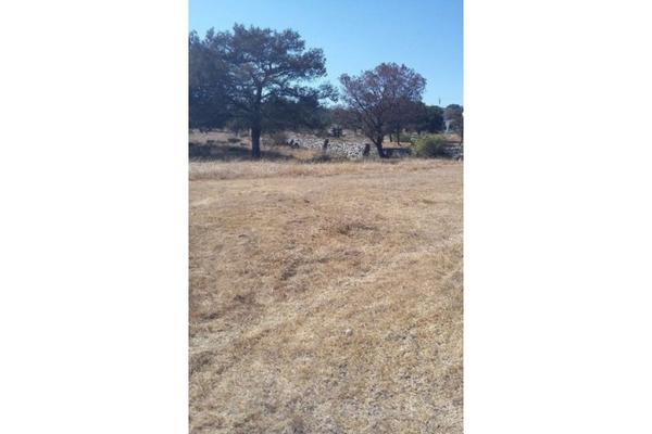 Foto de terreno habitacional en venta en  , san luis apizaquito, apizaco, tlaxcala, 5834984 No. 05
