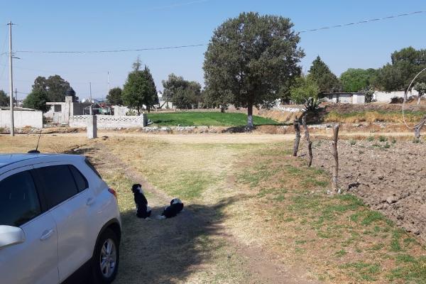Foto de terreno habitacional en venta en  , san luis apizaquito, apizaco, tlaxcala, 8862303 No. 06