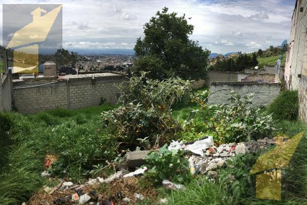 Foto de terreno habitacional en venta en  , san luis obispo, toluca, méxico, 8883353 No. 02
