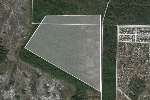 Foto de terreno habitacional en venta en  , san marcos nocoh, mérida, yucatán, 8137178 No. 02