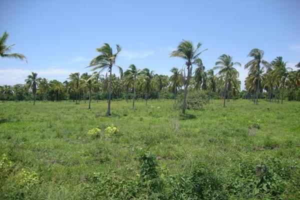 Foto de terreno habitacional en venta en  , san marcos, san marcos, guerrero, 13357728 No. 04