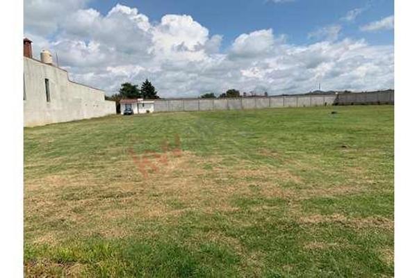 Foto de terreno habitacional en venta en  , san mateo tepopula, tenango del aire, méxico, 12267629 No. 01