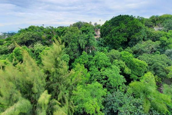 Foto de departamento en renta en  , san miguel acapantzingo, cuernavaca, morelos, 21346302 No. 15