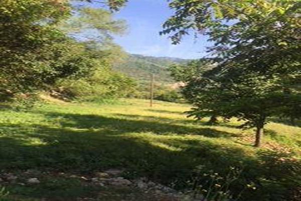 Foto de casa en venta en  , san miguel chimalapa, san miguel chimalapa, oaxaca, 11858608 No. 03