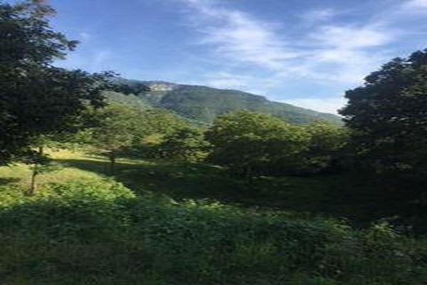 Foto de casa en venta en  , san miguel chimalapa, san miguel chimalapa, oaxaca, 11858608 No. 04