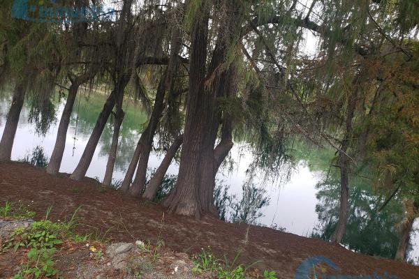 Foto de terreno habitacional en venta en  , san miguel, montemorelos, nuevo león, 9927369 No. 10