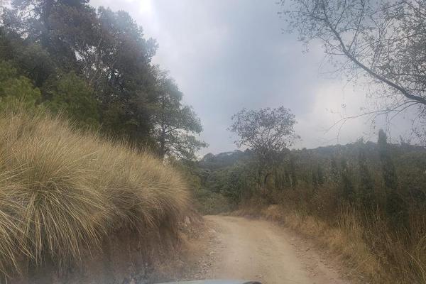 Foto de terreno habitacional en venta en  , san miguel, ocoyoacac, méxico, 7913400 No. 08