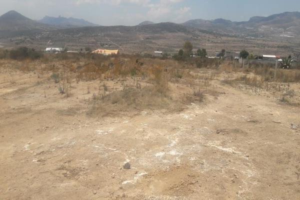 Foto de terreno comercial en venta en  , san miguel tornacuxtla, san agustín tlaxiaca, hidalgo, 7304063 No. 02