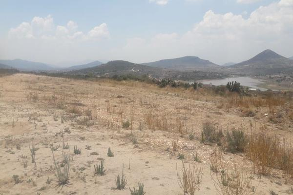 Foto de terreno comercial en venta en  , san miguel tornacuxtla, san agustín tlaxiaca, hidalgo, 7304063 No. 04