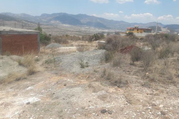 Foto de terreno comercial en venta en  , san miguel tornacuxtla, san agustín tlaxiaca, hidalgo, 7304063 No. 10
