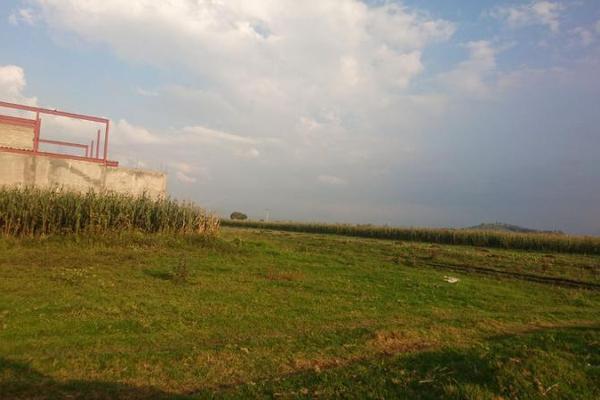 Foto de terreno habitacional en venta en  , san miguel totocuitlapilco, metepec, méxico, 7913645 No. 09