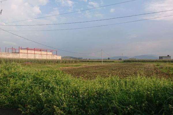 Foto de terreno habitacional en venta en  , san miguel totocuitlapilco, metepec, méxico, 7913645 No. 10