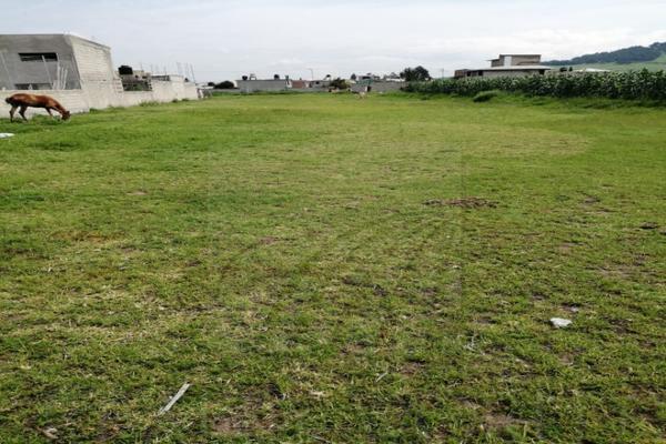 Foto de terreno habitacional en venta en  , san pablo autopan, toluca, méxico, 8306808 No. 01